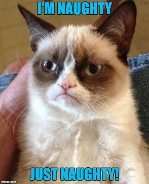 Grumpy Cat Meme | I'M NAUGHTY JUST NAUGHTY! | image tagged in memes,grumpy cat | made w/ Imgflip meme maker
