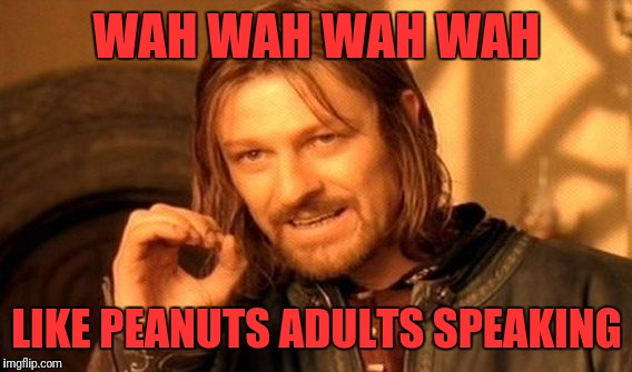 One Does Not Simply Meme | WAH WAH WAH WAH LIKE PEANUTS ADULTS SPEAKING | image tagged in memes,one does not simply | made w/ Imgflip meme maker