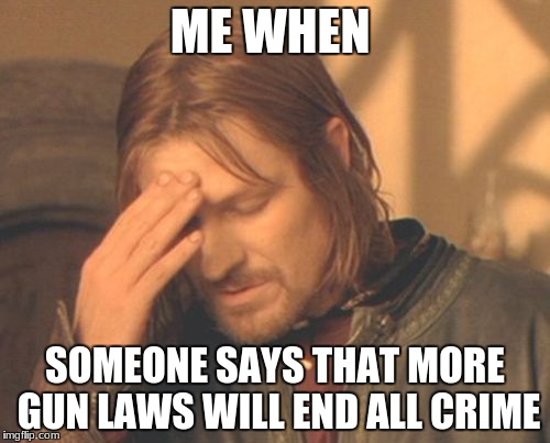 Frustrated Boromir Meme | ME WHEN SOMEONE SAYS THAT MORE GUN LAWS WILL END ALL CRIME | image tagged in memes,frustrated boromir | made w/ Imgflip meme maker