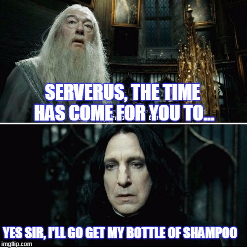 time to wash your hair! | SERVERUS, THE TIME HAS COME FOR YOU TO... YES SIR, I'LL GO GET MY BOTTLE OF SHAMPOO | image tagged in after all this time,memes | made w/ Imgflip meme maker