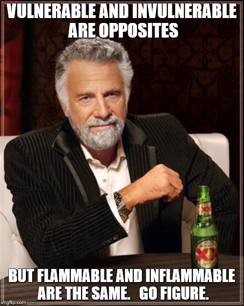 The Most Interesting Man In The World Meme | VULNERABLE AND INVULNERABLE ARE OPPOSITES BUT FLAMMABLE AND INFLAMMABLE ARE THE SAME.   GO FIGURE. | image tagged in memes,the most interesting man in the world | made w/ Imgflip meme maker