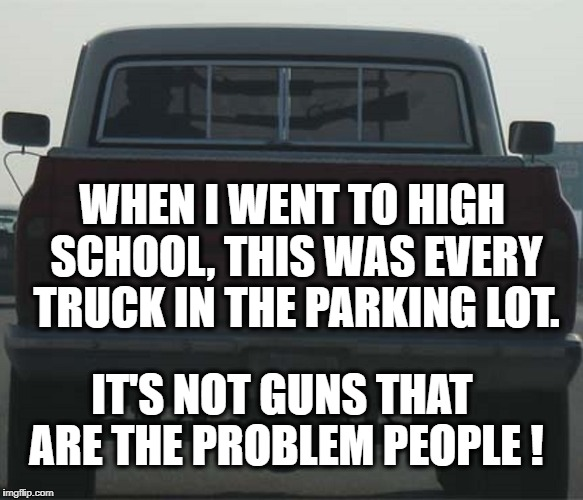 Guns are not the problem | IT'S NOT GUNS THAT ARE THE PROBLEM PEOPLE ! WHEN I WENT TO HIGH SCHOOL, THIS WAS EVERY TRUCK IN THE PARKING LOT. | image tagged in guns,nra,donald trump approves,school shooting | made w/ Imgflip meme maker