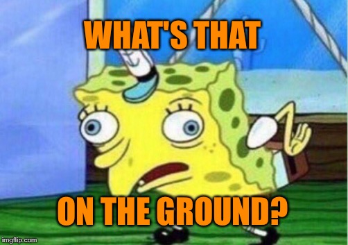 Mocking Spongebob Meme | WHAT'S THAT ON THE GROUND? | image tagged in memes,mocking spongebob | made w/ Imgflip meme maker