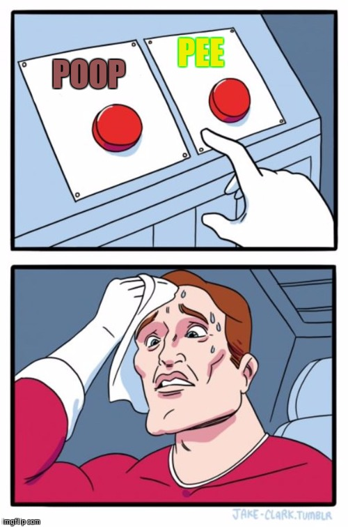 Two Buttons Meme | POOP PEE | image tagged in memes,two buttons | made w/ Imgflip meme maker