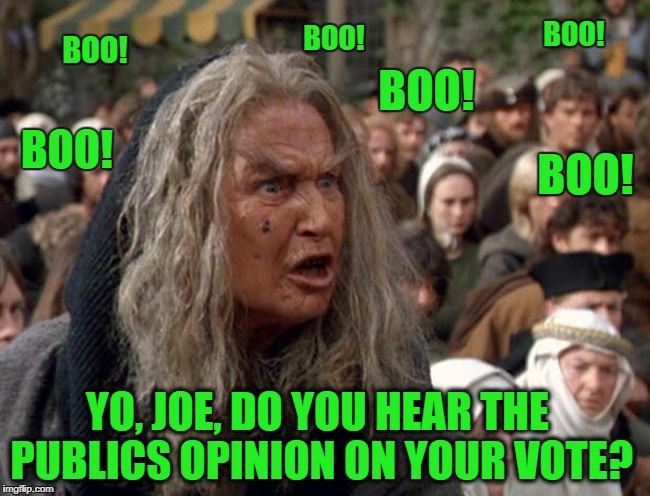 Boo Lady, leader of the 'the New Boo Movement' addresses Joe Kennedy at a recent town hall in Massachusetts   | BOO! BOO! BOO! BOO! BOO! YO, JOE, DO YOU HEAR THE PUBLICS OPINION ON YOUR VOTE? BOO! | image tagged in boo lady,memes,medical marijuana,public relations,marijuana,sad but true | made w/ Imgflip meme maker