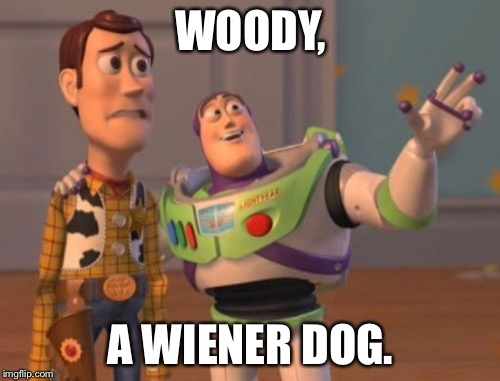 X, X Everywhere Meme | WOODY, A WIENER DOG. | image tagged in memes,x,x everywhere,x x everywhere | made w/ Imgflip meme maker