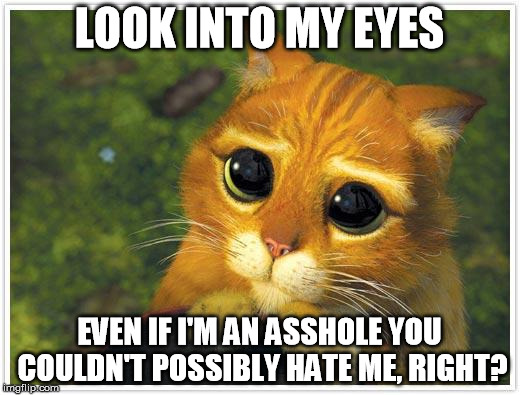 Shrek Cat | LOOK INTO MY EYES EVEN IF I'M AN ASSHOLE YOU COULDN'T POSSIBLY HATE ME, RIGHT? | image tagged in memes,shrek cat | made w/ Imgflip meme maker