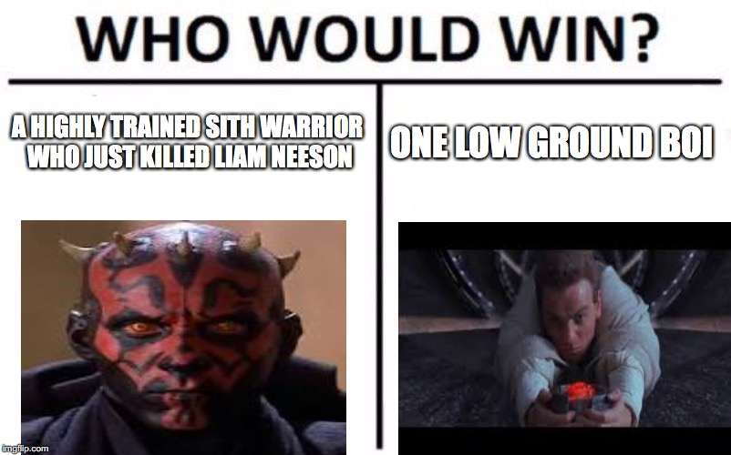 Who Would Win? Meme | A HIGHLY TRAINED SITH WARRIOR WHO JUST KILLED LIAM NEESON ONE LOW GROUND BOI | image tagged in memes,who would win | made w/ Imgflip meme maker