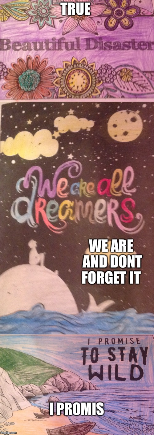 TRUE I PROMIS WE ARE AND DONT FORGET IT | image tagged in inspirational quote | made w/ Imgflip meme maker