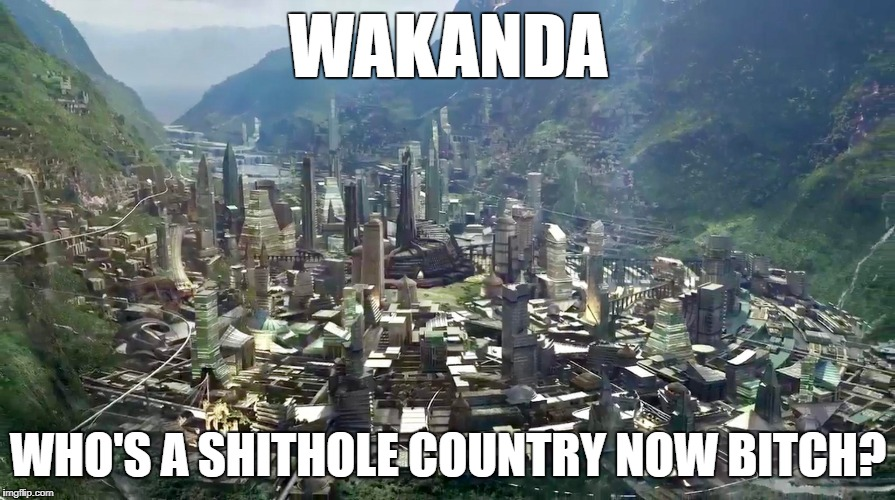 WAKANDA WHO'S A SHITHOLE COUNTRY NOW B**CH? | image tagged in black panther,wakanda,shithole country | made w/ Imgflip meme maker