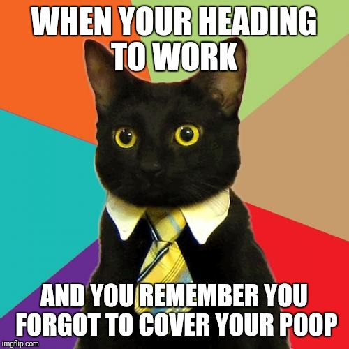 Business Cat | WHEN YOUR HEADING TO WORK AND YOU REMEMBER YOU FORGOT TO COVER YOUR POOP | image tagged in memes,business cat | made w/ Imgflip meme maker