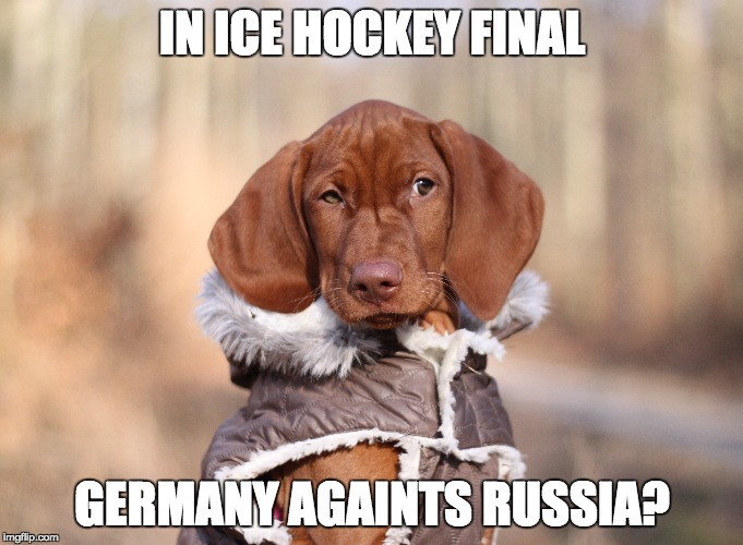 Vizsla Baby | IN ICE HOCKEY FINAL GERMANY AGAINTS RUSSIA? | image tagged in fun,vizsla,dog,ice hockey | made w/ Imgflip meme maker