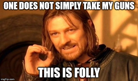One Does Not Simply Meme | ONE DOES NOT SIMPLY TAKE MY GUNS THIS IS FOLLY | image tagged in memes,one does not simply | made w/ Imgflip meme maker