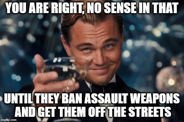 Leonardo Dicaprio Cheers Meme | YOU ARE RIGHT, NO SENSE IN THAT UNTIL THEY BAN ASSAULT WEAPONS AND GET THEM OFF THE STREETS | image tagged in memes,leonardo dicaprio cheers | made w/ Imgflip meme maker