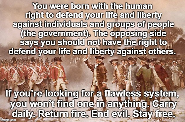 Stay Free | You were born with the human right to defend your life and liberty against individuals and groups of people (the government). The opposing s | image tagged in live,freedom | made w/ Imgflip meme maker