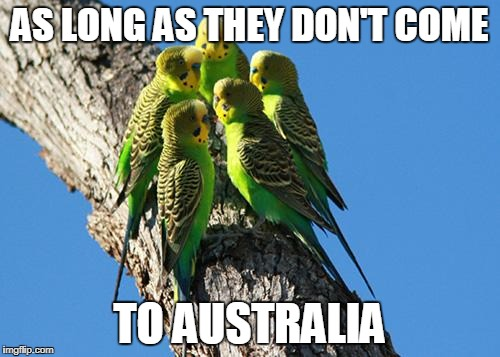 The Meeting | AS LONG AS THEY DON'T COME TO AUSTRALIA | image tagged in the meeting | made w/ Imgflip meme maker