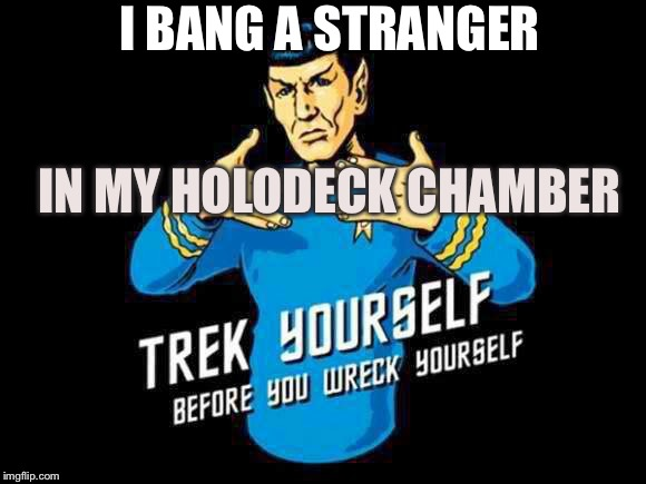 Feed the Locha Torcha Pinga while I force my Fingas where my Vollas Linga~ | I BANG A STRANGER IN MY HOLODECK CHAMBER | image tagged in trek yourself,before you wreck yourself,do it memes | made w/ Imgflip meme maker