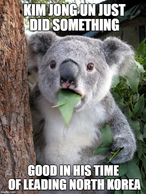 Say What? | KIM JONG UN JUST DID SOMETHING GOOD IN HIS TIME OF LEADING NORTH KOREA | image tagged in memes,surprised koala | made w/ Imgflip meme maker