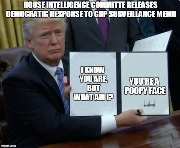I have taken the liberty to paraphrase the DNC response.  | I KNOW YOU ARE, BUT WHAT AM I? YOU'RE A POOPY FACE HOUSE INTELLIGENCE COMMITTE RELEASES DEMOCRATIC RESPONSE TO GOP SURVEILLANCE MEMO | image tagged in memes,trump bill signing,democrats,trump russia collusion,funny memes,political meme | made w/ Imgflip meme maker
