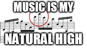MUSIC IS MY NATURAL HIGH | image tagged in high notes | made w/ Imgflip meme maker