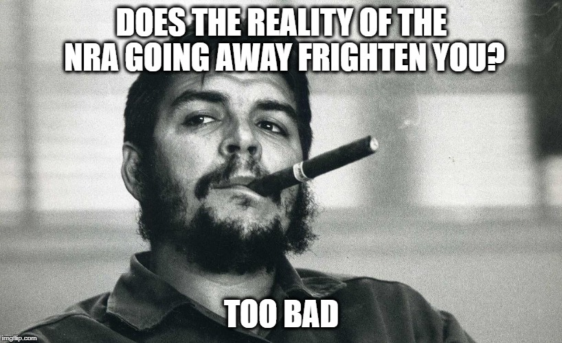 Che | DOES THE REALITY OF THE NRA GOING AWAY FRIGHTEN YOU? TOO BAD | image tagged in che | made w/ Imgflip meme maker