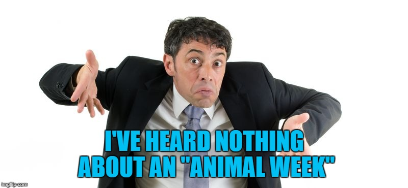 "I'VE HEARD NOTHING ABOUT AN ""ANIMAL WEEK"" 