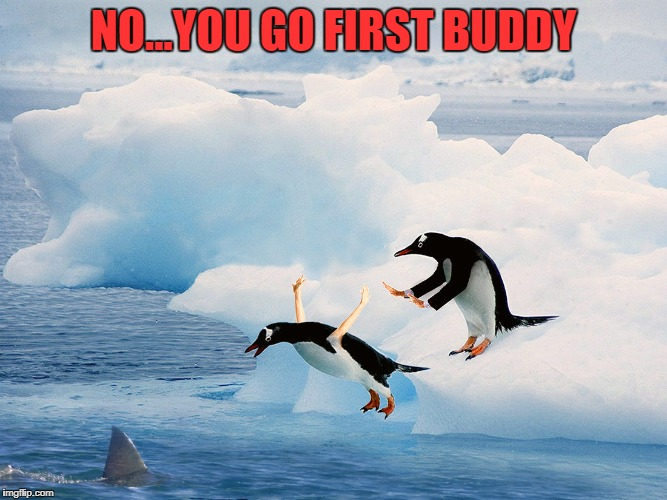 NO...YOU GO FIRST BUDDY | made w/ Imgflip meme maker