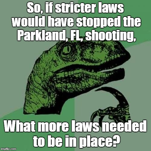 Philosoraptor Meme | So, if stricter laws would have stopped the Parkland, FL, shooting, What more laws needed to be in place? | image tagged in memes,philosoraptor | made w/ Imgflip meme maker