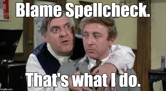 Bialistock & Bloom | Blame Spellcheck. That's what I do. | image tagged in bialistock  bloom | made w/ Imgflip meme maker