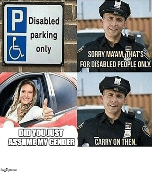 DID YOU JUST ASSUME MY GENDER | image tagged in disabled parking,memes,funny,ssby,is this political | made w/ Imgflip meme maker