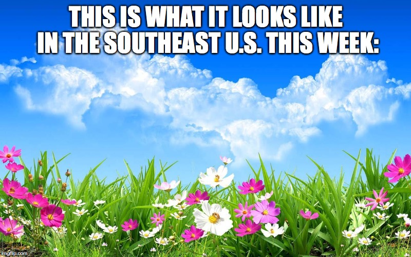 THIS IS WHAT IT LOOKS LIKE IN THE SOUTHEAST U.S. THIS WEEK: | made w/ Imgflip meme maker