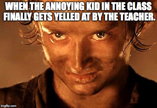 WHEN THE ANNOYING KID IN THE CLASS FINALLY GETS YELLED AT BY THE TEACHER. | image tagged in frodo | made w/ Imgflip meme maker
