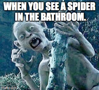 WHEN YOU SEE A SPIDER IN THE BATHROOM. | image tagged in gutless gollum | made w/ Imgflip meme maker
