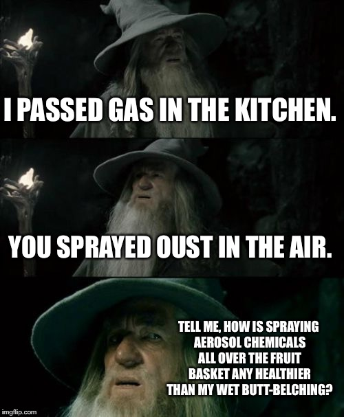 Stop masking my farts | I PASSED GAS IN THE KITCHEN. YOU SPRAYED OUST IN THE AIR. TELL ME, HOW IS SPRAYING AEROSOL CHEMICALS ALL OVER THE FRUIT BASKET ANY HEALTHIER | image tagged in memes,confused gandalf,fart jokes,gas,kitchen,food | made w/ Imgflip meme maker