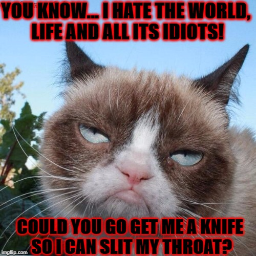 YOU KNOW... I HATE THE WORLD, LIFE AND ALL ITS IDIOTS! COULD YOU GO GET ME A KNIFE SO I CAN SLIT MY THROAT? | image tagged in grumpy cat | made w/ Imgflip meme maker