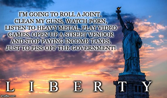 Freedom | I'M GOING TO ROLL A JOINT, CLEAN MY GUNS, WATCH PORN, LISTEN TO HEAVY METAL, PLAY VIDEO GAMES, OPEN UP A STREET VENDOR AND STOP PAYING INCOM | image tagged in liberty,marijuana,guns,taxes,porn,video games | made w/ Imgflip meme maker