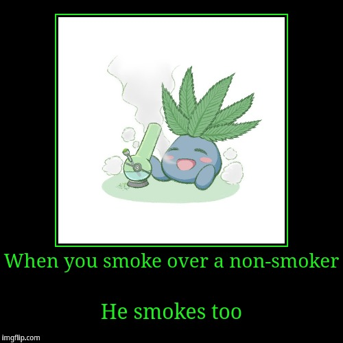 When you smoke over a non-smoker, he smoke too | When you smoke over a non-smoker | He smokes too | image tagged in funny,demotivationals,smoke,smoke weed everyday,oddish | made w/ Imgflip demotivational maker