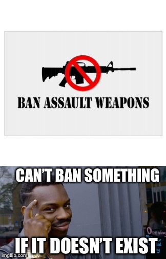 "There are no such things as ""assault weapons"" 