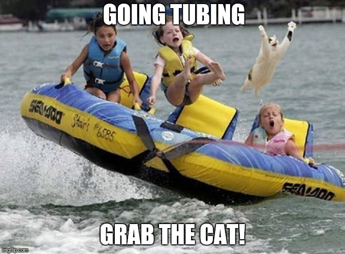 Going tubing | GOING TUBING GRAB THE CAT! | image tagged in funny tubing,funny cat | made w/ Imgflip meme maker