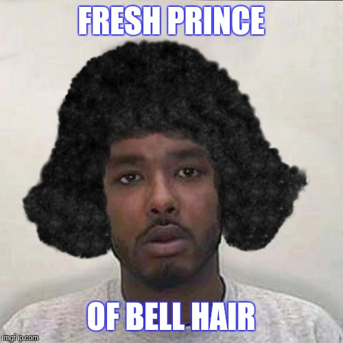 Makes Carlton Seem Cool | FRESH PRINCE OF BELL HAIR | image tagged in fresh prince,hair,funny | made w/ Imgflip meme maker