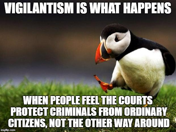 Unpopular Opinion Puffin | VIGILANTISM IS WHAT HAPPENS WHEN PEOPLE FEEL THE COURTS PROTECT CRIMINALS FROM ORDINARY CITIZENS, NOT THE OTHER WAY AROUND | image tagged in memes,unpopular opinion puffin | made w/ Imgflip meme maker