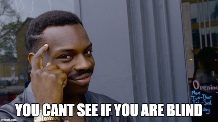 Roll Safe Think About It Meme | YOU CANT SEE IF YOU ARE BLIND | image tagged in memes,roll safe think about it | made w/ Imgflip meme maker