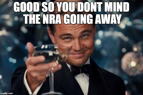 Leonardo Dicaprio Cheers Meme | GOOD SO YOU DONT MIND THE NRA GOING AWAY | image tagged in memes,leonardo dicaprio cheers | made w/ Imgflip meme maker