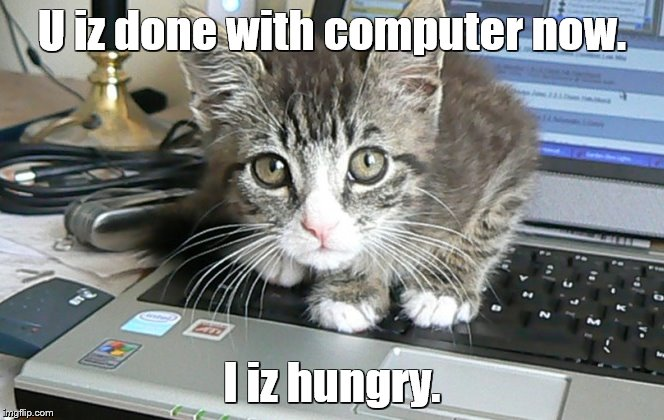Computer cat | U iz done with computer now. I iz hungry. | image tagged in memes,cats,funny cats,computers | made w/ Imgflip meme maker