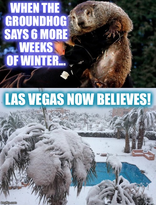 WHEN THE GROUNDHOG SAYS 6 MORE WEEKS OF WINTER... LAS VEGAS NOW BELIEVES! | made w/ Imgflip meme maker