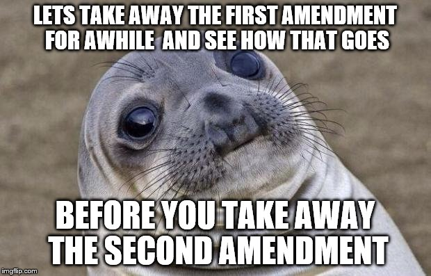 Awkward Moment Sealion Meme | LETS TAKE AWAY THE FIRST AMENDMENT  FOR AWHILE  AND SEE HOW THAT GOES BEFORE YOU TAKE AWAY THE SECOND AMENDMENT | image tagged in memes,awkward moment sealion | made w/ Imgflip meme maker