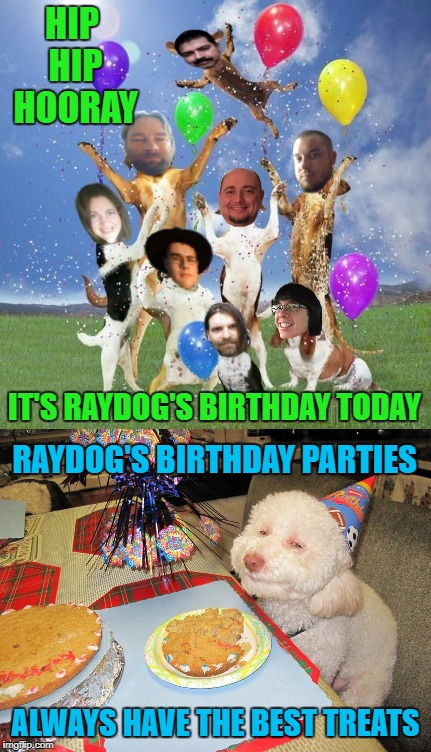 Wish you all could be here!!! Props to anyone that knows who all these users are!!! | HIP HIP HOORAY IT'S RAYDOG'S BIRTHDAY TODAY RAYDOG'S BIRTHDAY PARTIES ALWAYS HAVE THE BEST TREATS | image tagged in happy birthday,memes,funny,marijuana treats,stoned dog,raydog's birthday | made w/ Imgflip meme maker