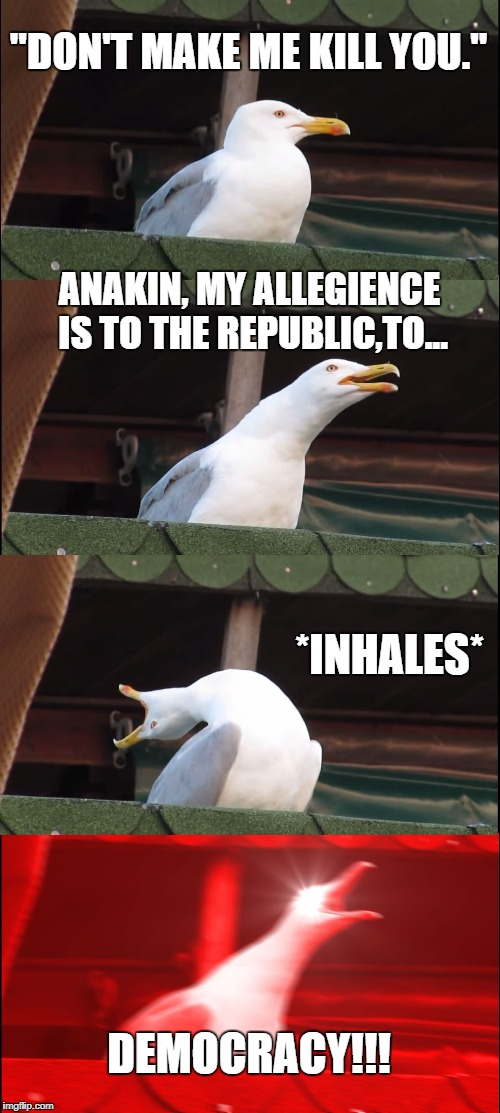 "Inhaling Seagull Meme | ""DON'T MAKE ME KILL YOU."" ANAKIN, MY ALLEGIENCE IS TO THE REPUBLIC,TO... *INHALES* DEMOCRACY!!! 