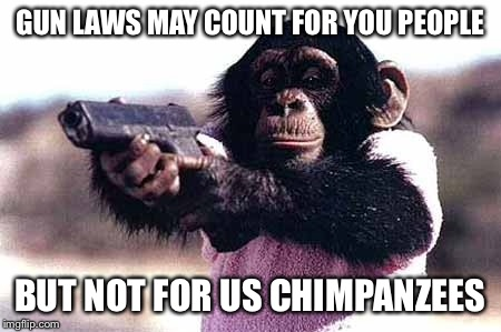 Gun laws may count for you people |  GUN LAWS MAY COUNT FOR YOU PEOPLE; BUT NOT FOR US CHIMPANZEES | image tagged in gun laws,chimpanzee,unbreaklp,doesnt count for me | made w/ Imgflip meme maker