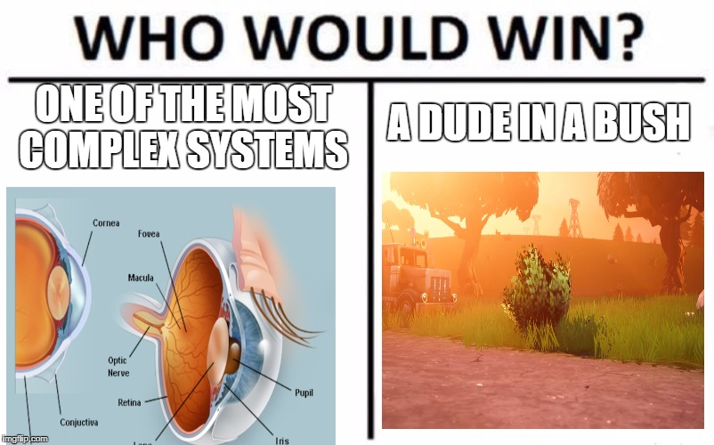 Who Would Win? Meme | ONE OF THE MOST COMPLEX SYSTEMS A DUDE IN A BUSH | image tagged in memes,who would win | made w/ Imgflip meme maker